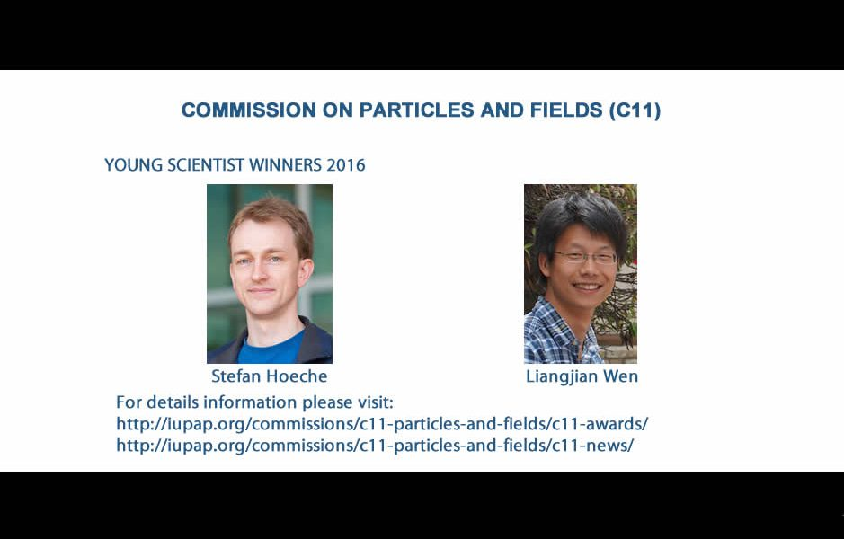 COMMISSION ON PARTICLES AND FIELDS (C11)